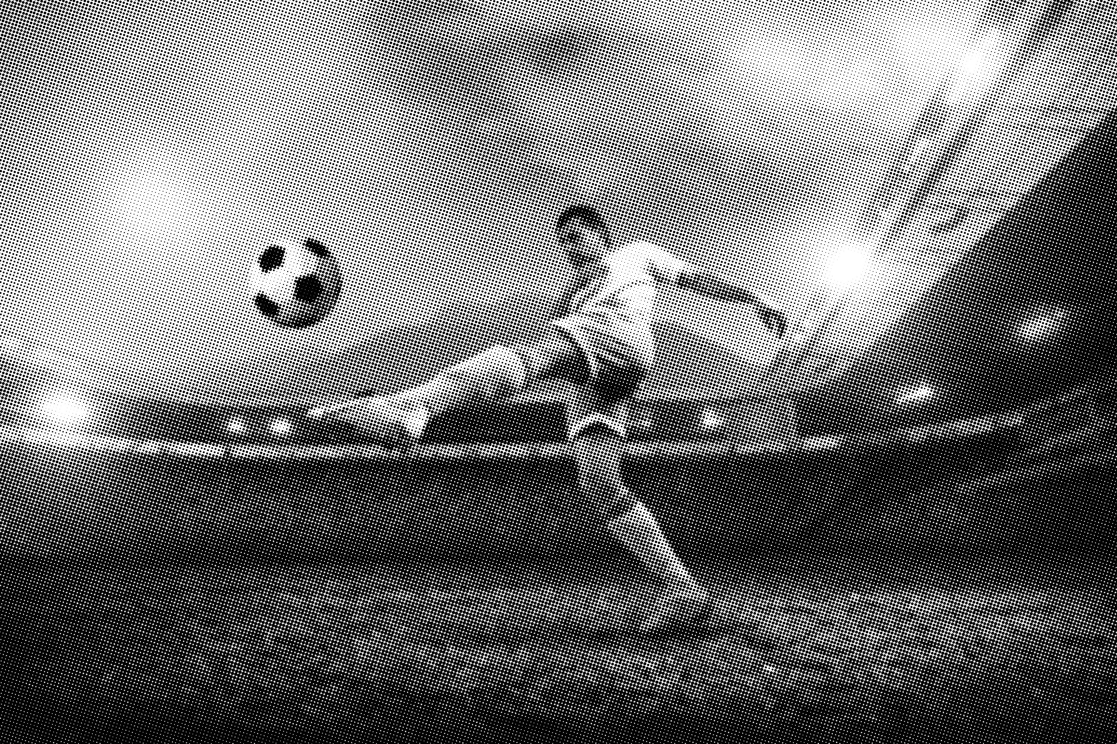 Яндекс дзен ставки на спорт